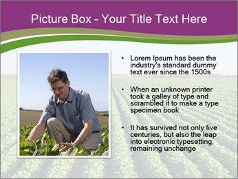 Green Field Till Horizon PowerPoint Template - Slide 13