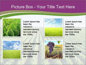 Green Field Till Horizon PowerPoint Template - Slide 14