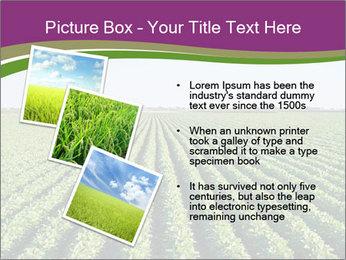 Green Field Till Horizon PowerPoint Template - Slide 17