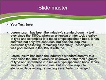 Green Field Till Horizon PowerPoint Templates - Slide 2