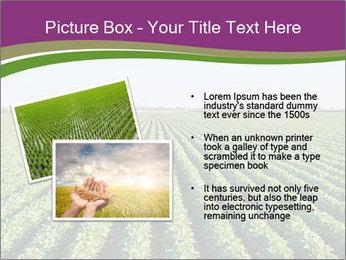 Green Field Till Horizon PowerPoint Template - Slide 20