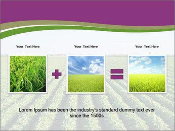 Green Field Till Horizon PowerPoint Template - Slide 22