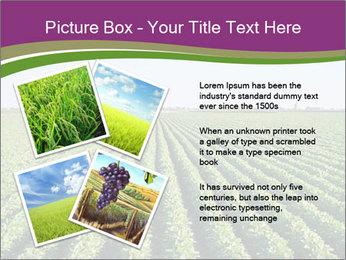 Green Field Till Horizon PowerPoint Template - Slide 23