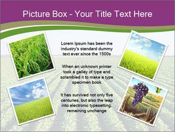 Green Field Till Horizon PowerPoint Template - Slide 24