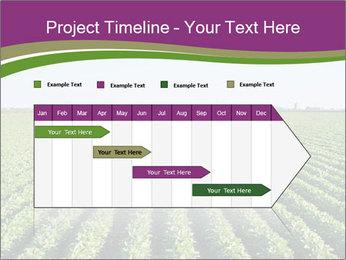 Green Field Till Horizon PowerPoint Template - Slide 25