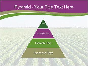 Green Field Till Horizon PowerPoint Template - Slide 30