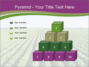 Green Field Till Horizon PowerPoint Template - Slide 31