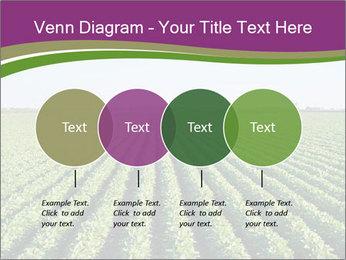 Green Field Till Horizon PowerPoint Template - Slide 32