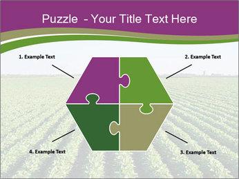 Green Field Till Horizon PowerPoint Template - Slide 40