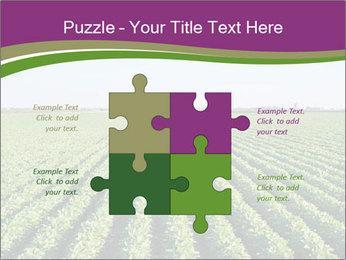 Green Field Till Horizon PowerPoint Template - Slide 43