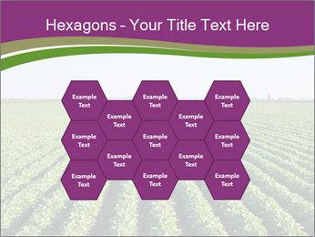 Green Field Till Horizon PowerPoint Template - Slide 44