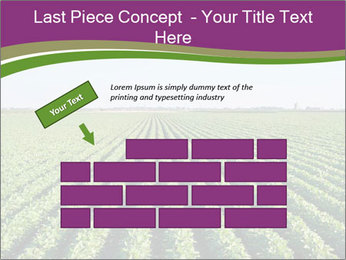 Green Field Till Horizon PowerPoint Template - Slide 46