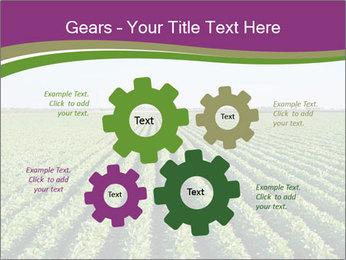 Green Field Till Horizon PowerPoint Template - Slide 47