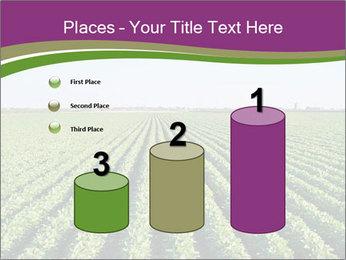 Green Field Till Horizon PowerPoint Template - Slide 65