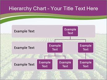 Green Field Till Horizon PowerPoint Template - Slide 67