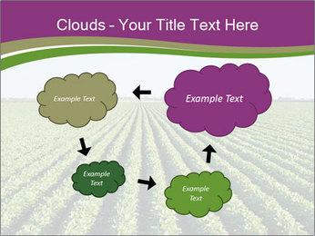 Green Field Till Horizon PowerPoint Template - Slide 72