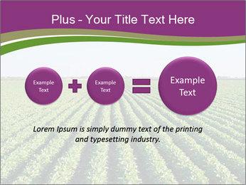 Green Field Till Horizon PowerPoint Template - Slide 75
