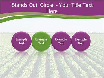 Green Field Till Horizon PowerPoint Template - Slide 76