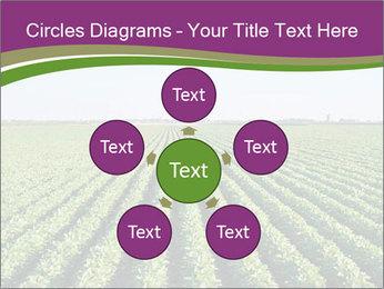 Green Field Till Horizon PowerPoint Template - Slide 78