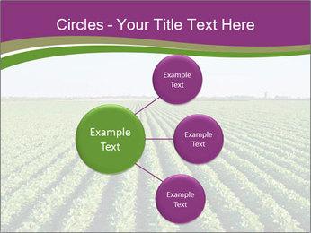 Green Field Till Horizon PowerPoint Template - Slide 79