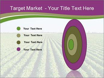 Green Field Till Horizon PowerPoint Templates - Slide 84