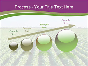 Green Field Till Horizon PowerPoint Template - Slide 87