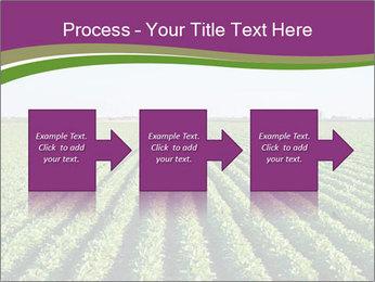 Green Field Till Horizon PowerPoint Template - Slide 88