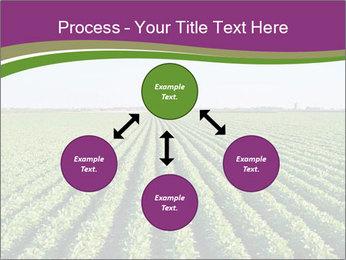 Green Field Till Horizon PowerPoint Template - Slide 91