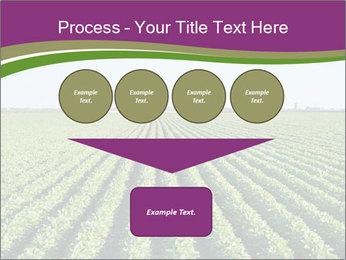Green Field Till Horizon PowerPoint Template - Slide 93