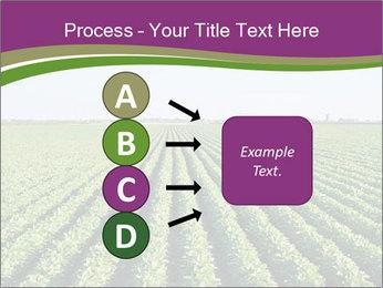 Green Field Till Horizon PowerPoint Template - Slide 94