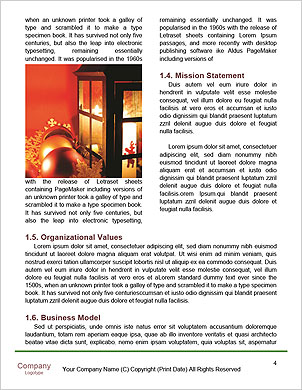 0000090350 Word Template - Page 4