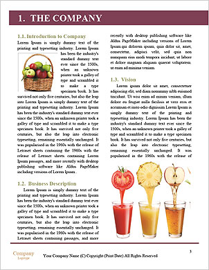0000090353 Word Template - Page 3