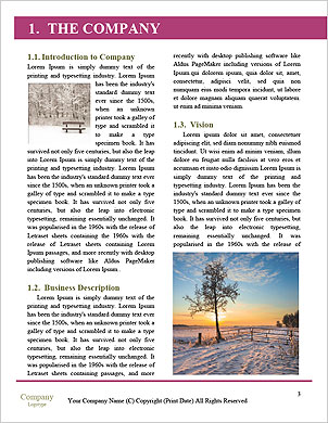 0000090358 Word Template - Page 3
