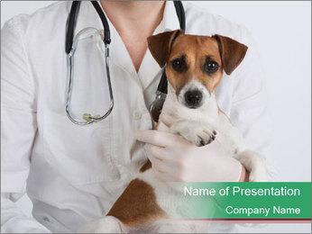 Vet Hospital PowerPoint Template - Slide 1