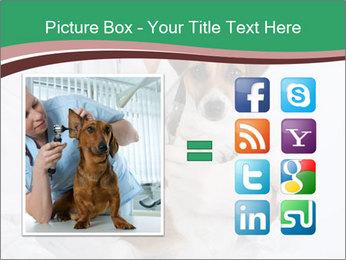 Vet Hospital PowerPoint Template - Slide 21