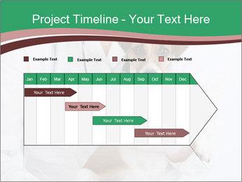 Vet Hospital PowerPoint Template - Slide 25