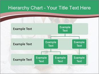 Vet Hospital PowerPoint Template - Slide 67