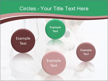 Vet Hospital PowerPoint Template - Slide 77