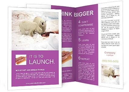 0000090373 Brochure Template