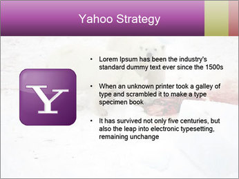 White Bears Hunting PowerPoint Templates - Slide 11