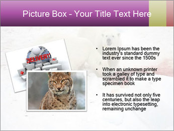 White Bears Hunting PowerPoint Templates - Slide 20