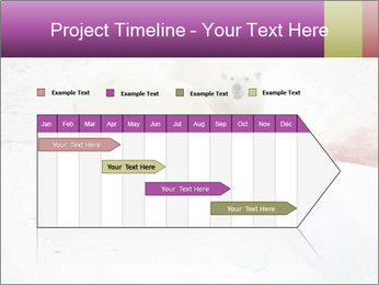 White Bears Hunting PowerPoint Templates - Slide 25