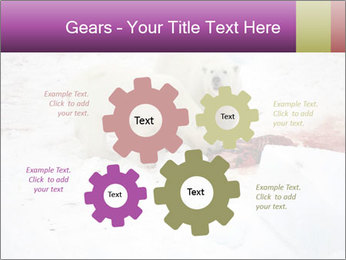 White Bears Hunting PowerPoint Templates - Slide 47