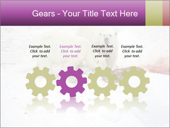 White Bears Hunting PowerPoint Templates - Slide 48