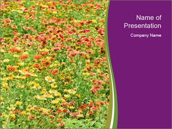 Spring Blossom PowerPoint Template - Slide 1