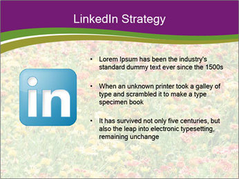 Spring Blossom PowerPoint Template - Slide 12