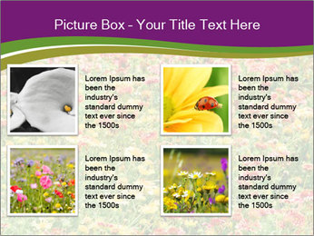 Spring Blossom PowerPoint Template - Slide 14
