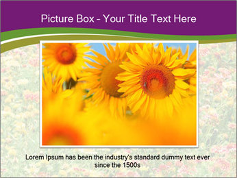 Spring Blossom PowerPoint Template - Slide 15