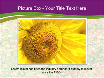 Spring Blossom PowerPoint Template - Slide 16