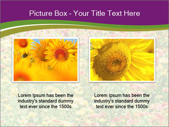 Spring Blossom PowerPoint Template - Slide 18